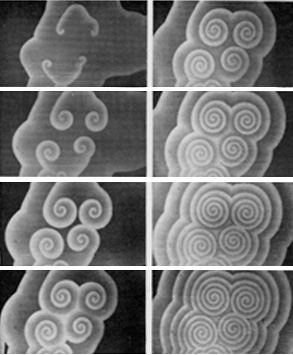 Chemical Spiral Waves